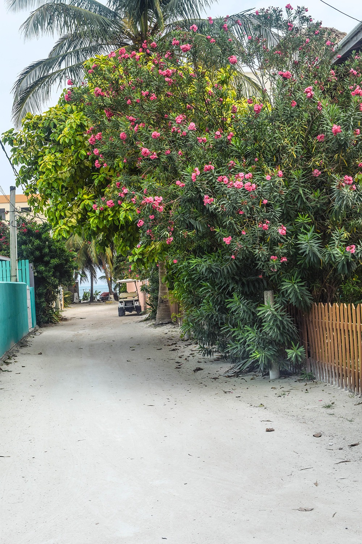MarcyYu_Belize_6