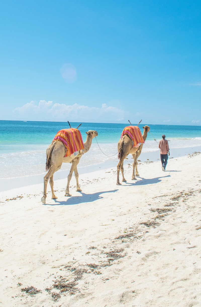 MarcyYu_Kenya_Diani_Beach6