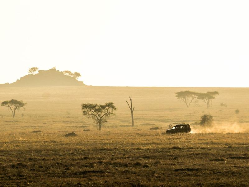 MarcyYu_Tanzania_FourSeasons_Serengeti10