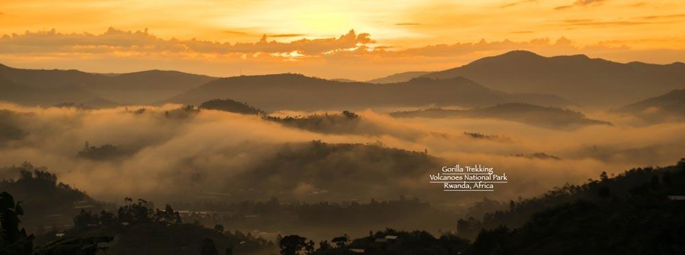 marcy-yu-gorilla-trekking-rwanda-africa